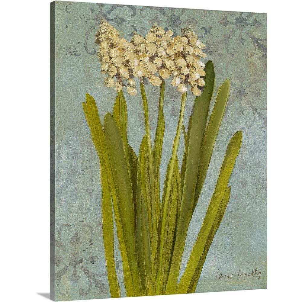 Lanie Lorethギャラリー‐ Hyacinth onティールII 38