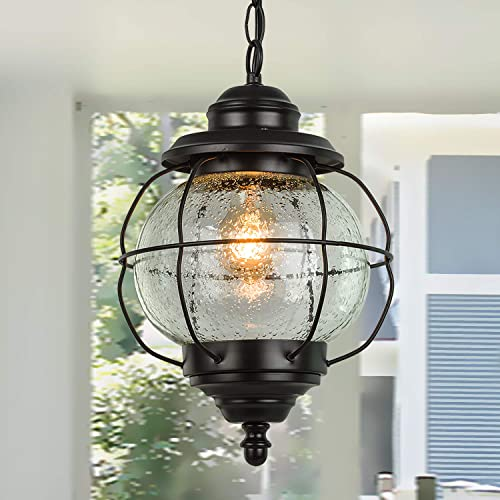 LALUZ Outdoor Hanging Lantern Porch Painted Black Metal with Clear Bubbled Glass Globe in Iron Cage Frame, 1-Light Light, 10.2 Exterior Pendant Lighting for Garage