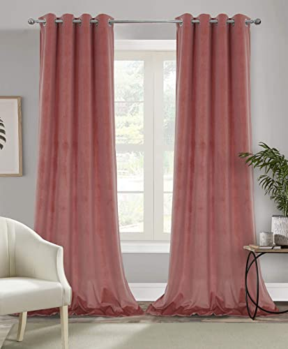 Alexandra Cole 100 Blackout Curtain