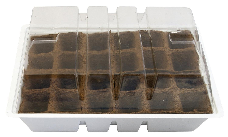 Biotop Kit semillero con 24 macetas de turba de 4 x 4 cm (con Tapa y Bandeja, 33 x 23 cm), 1x1x1 cm, B2012: Amazon.es: Jardín