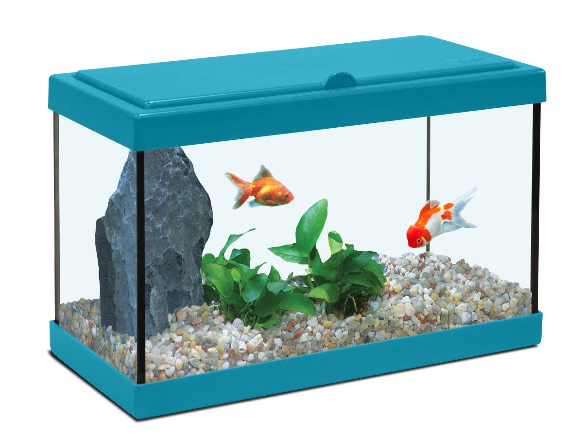 Aquarium Salle De Bain ~ aquarium enfant amazon fr