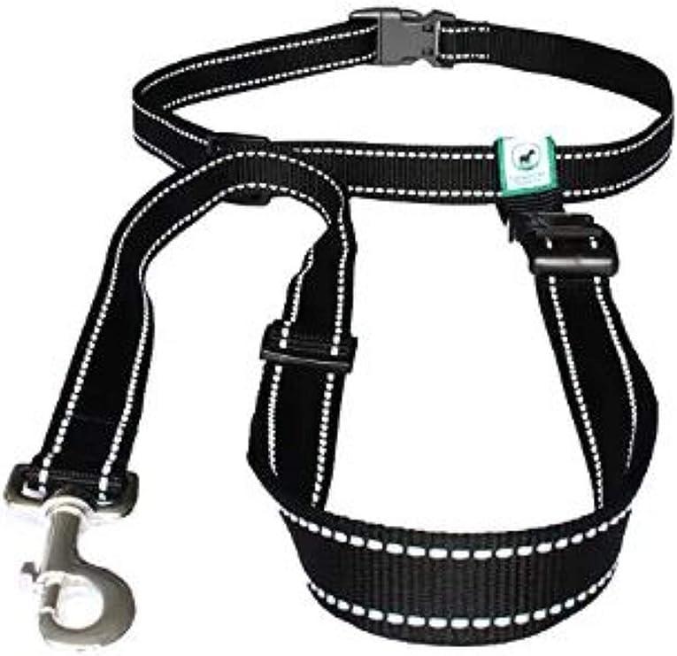 16mm Convertible leash 58 4 way Leash Hands Free Leash Vegan wide Service Leash Jogging Leash