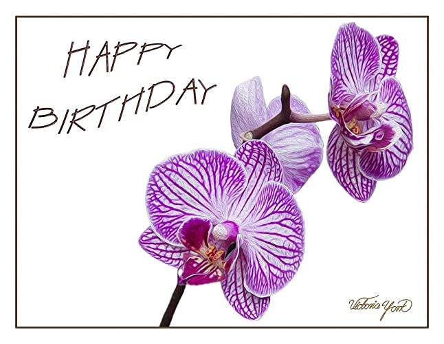 Image Unavailable Not Available For Color Fine Art Birthday Greeting Card