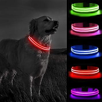 LED Hunde Leuchthalsband Led Halsband in 5 Farben  S M L XL