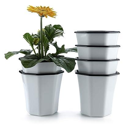 Vasi Per Esterno In Plastica.T4u Vaso Per Pianta Da Interni Esterni Bianco 13cm Plastica Ottagono