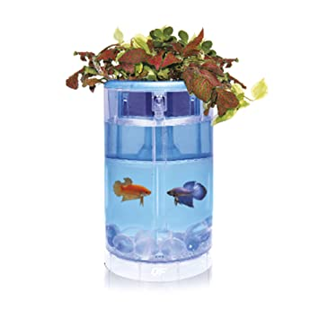 Ocean Free AT620C Kit Betta Flora Led, Azul