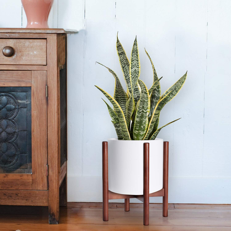 Amazon.com: Mid Century - Soporte para plantas modernas ...