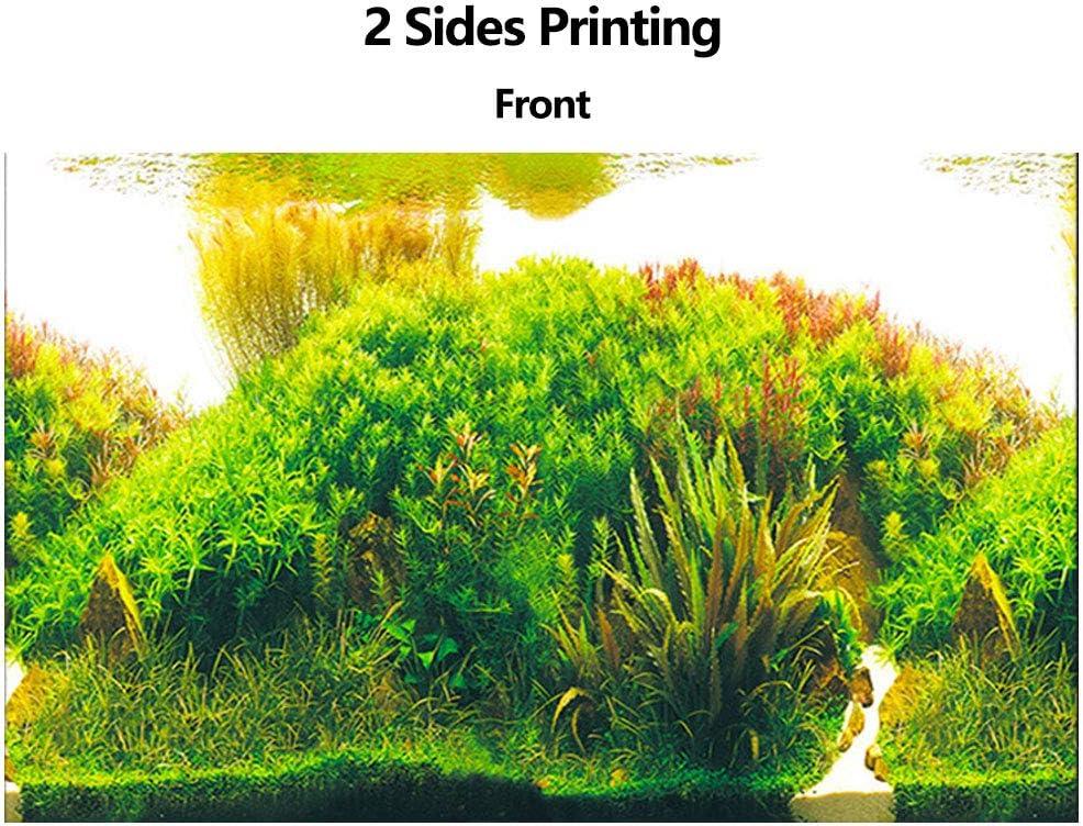 19.7 H x 32.3 W Aquarium Background Sticker Water Plants Double Sides Wallpaper Fish Tank Backdrop Poster