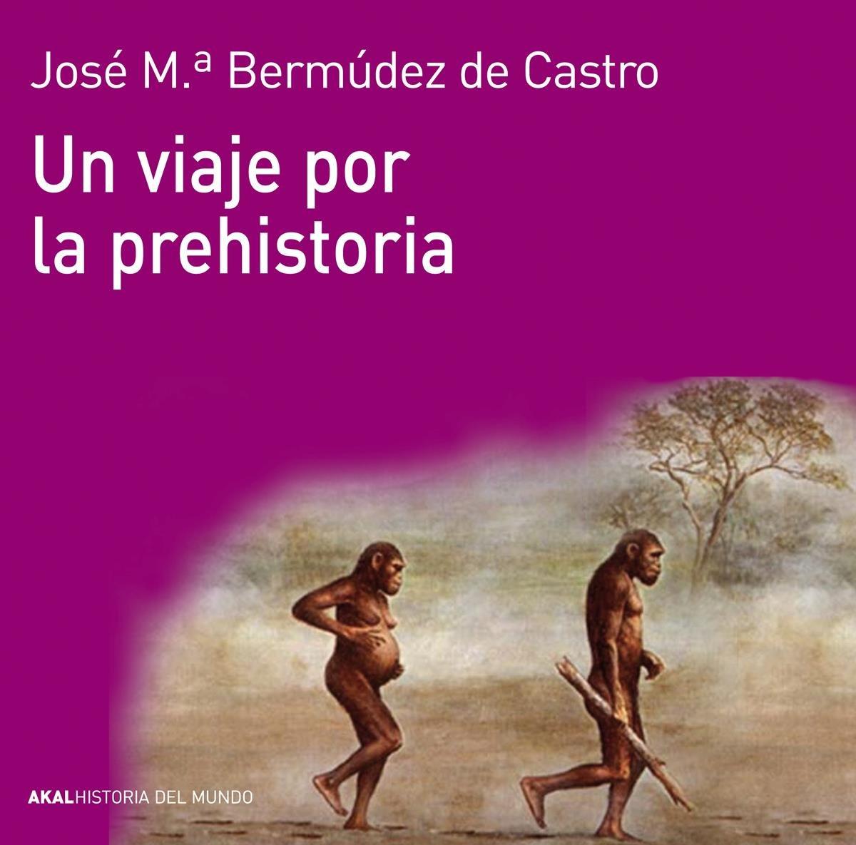 Un viaje por la prehistoria (Historia del mundo) Tapa blanda – 14 feb 2013 Akal 8446037734 Prehistory European history