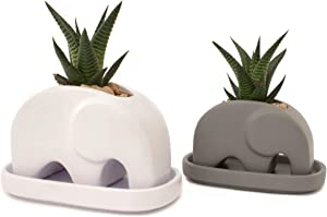 Matani Elephant Succulent Planter Set (White & Grey) | Cement & Concrete Elephant Plant Holder | 4 Inch Elephant Planter Pot | Office Desk & Living Room Elephant Decor |
