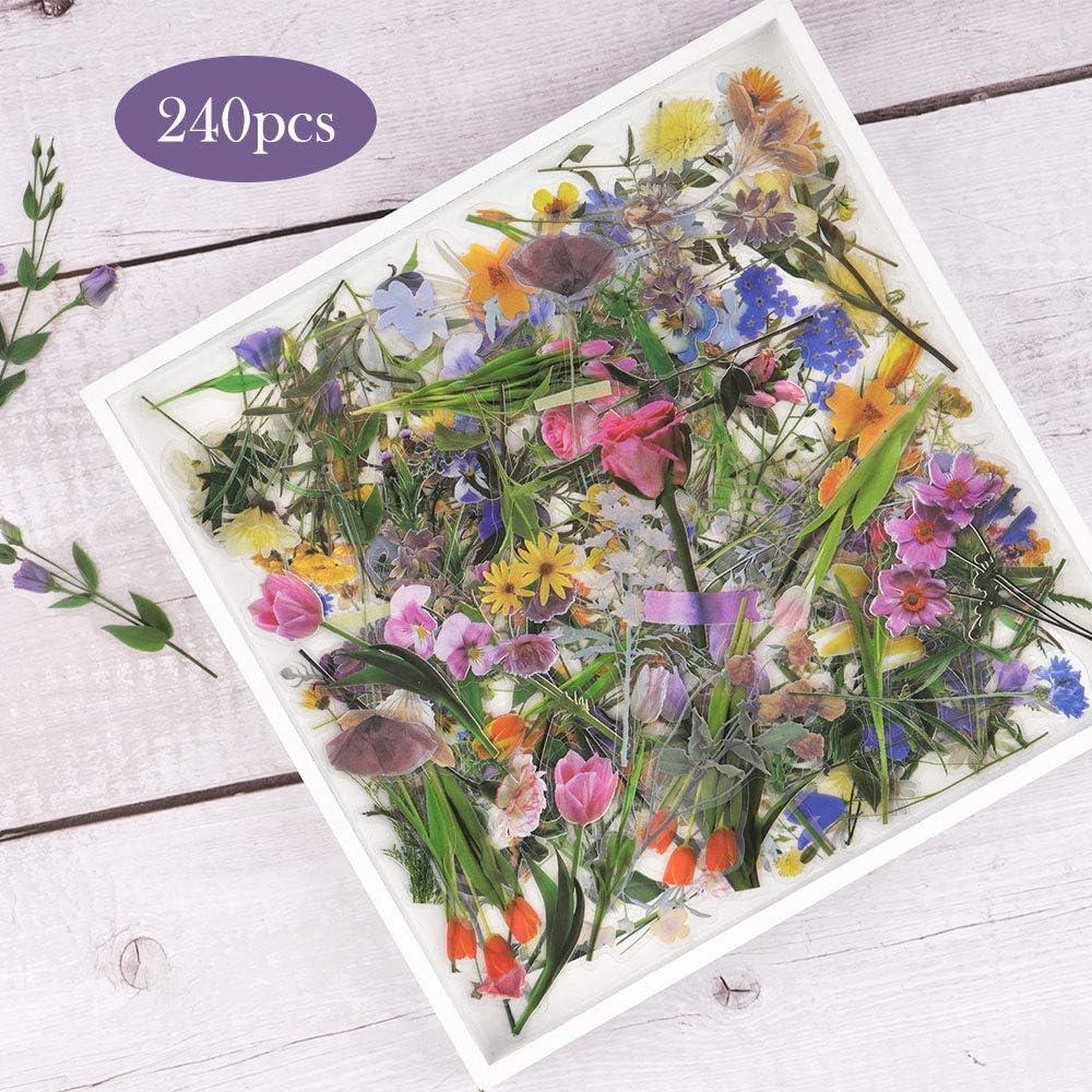 Flowers Sticker Set, NogaMoga PET Transparent Decorative Stickers with Special Shaped, 6 Nature Themes Plants Stickers for Scrapbooking, Arts, DIY Crafts, Bullet Journals, Laptops - 240pcs