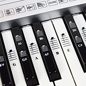Piano and Keyboard Music Note Full Set Stickers for White and Black Keys, Transparent and Removable, Made in USA