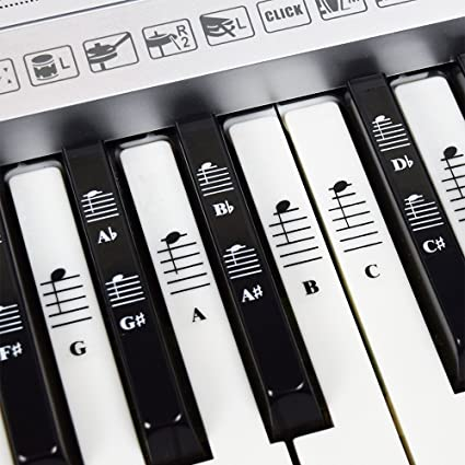piano and keyboard music note full set stickers for white and black keys with piano songs