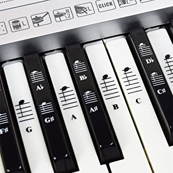 piano and keyboard music note full set stickers for white and black rh amazon co uk Electric Keyboard Target Full Electric Keyboard