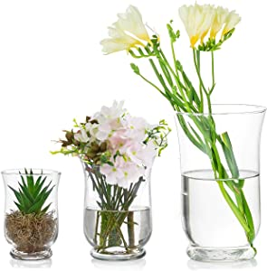 Glasseam 3Pcs/Set Vases for Flowers, Clear Hurricane Vase, Clear Vases for Decor, Hurricane Candle Holder for Home Table Decor