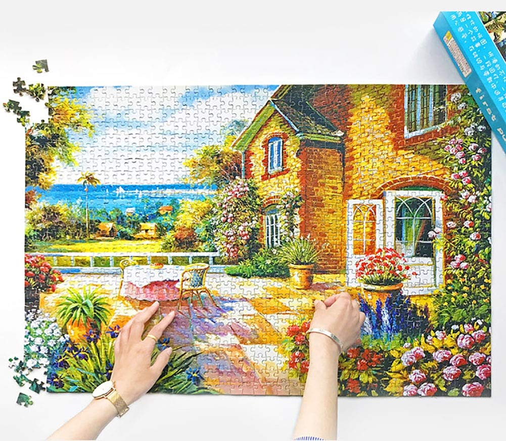 1000 Stück Puzzle for Erwachsene Themen Puzzlesets for Familien Karton Puzzles Lernspielzeug for Kinder Geschenk (Color : C) N