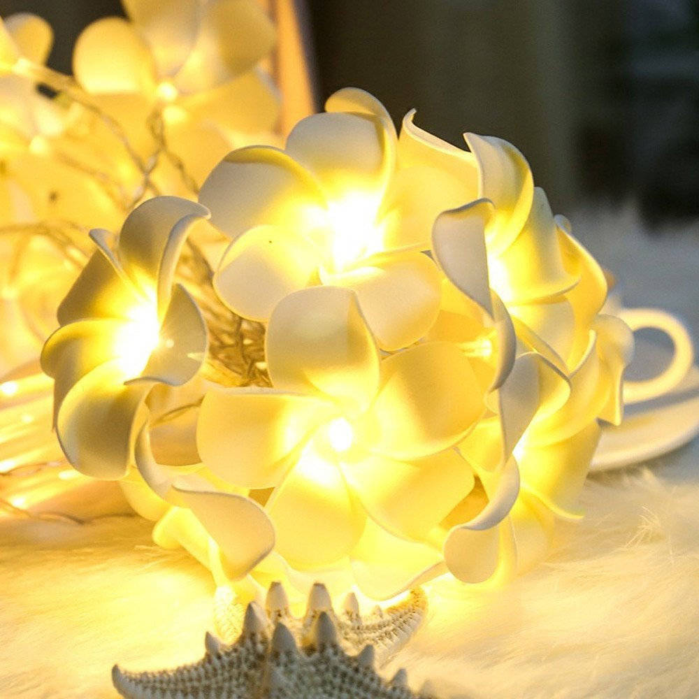 ♛Euone Wine Stopper ♛Clearance♛,Vintage Frangipani Flower LED Fairy Light String Battery Home Party Wedding