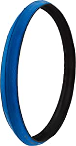 Schwalbe Insider HS 376 Performance Home Trainer Bicycle Tire - Folding Bead - Blue