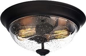 Prominence Home 51381 Designer Series Flushmount Lighting, 13