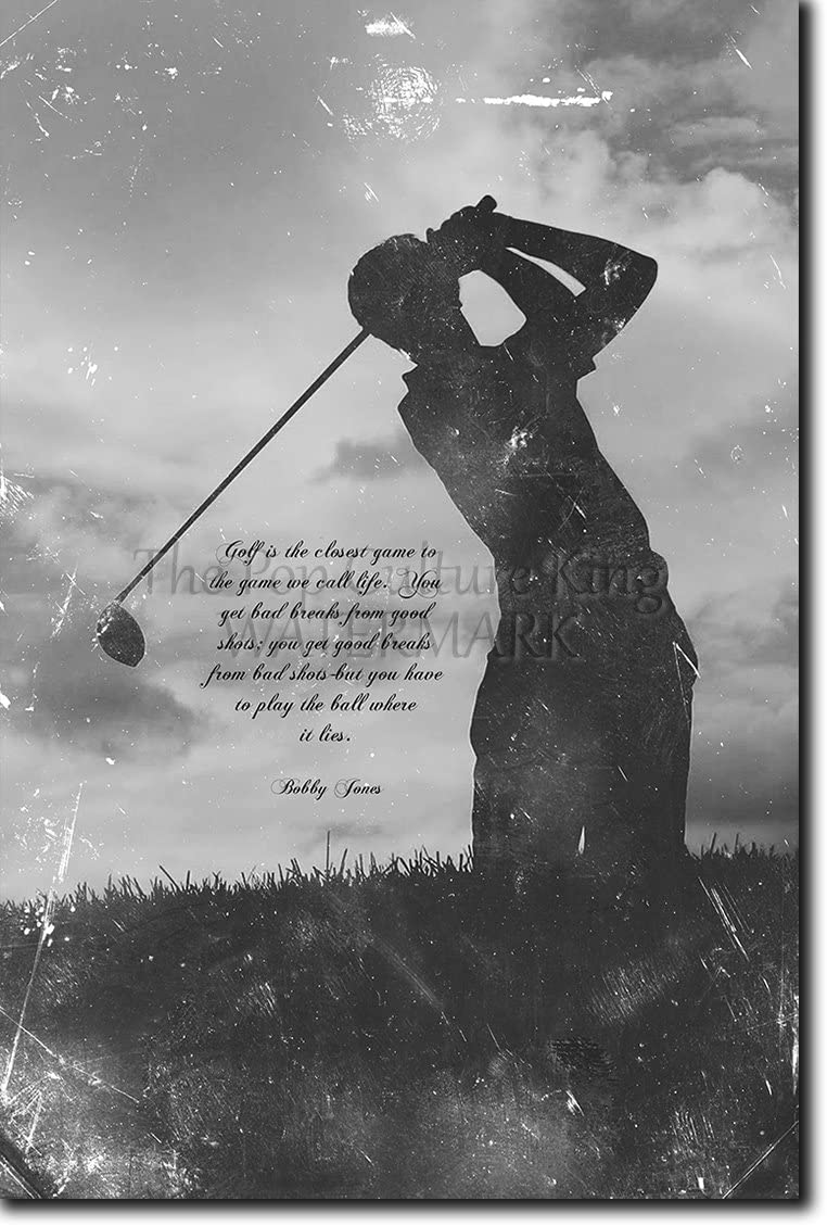 Amazon Com Introspective Chameleon Golf Motivational Art Print Play The Ball Where It Lies Photo Poster Motivation Inspiration Unique Gift Size 12 X 8 Inches Posters Prints