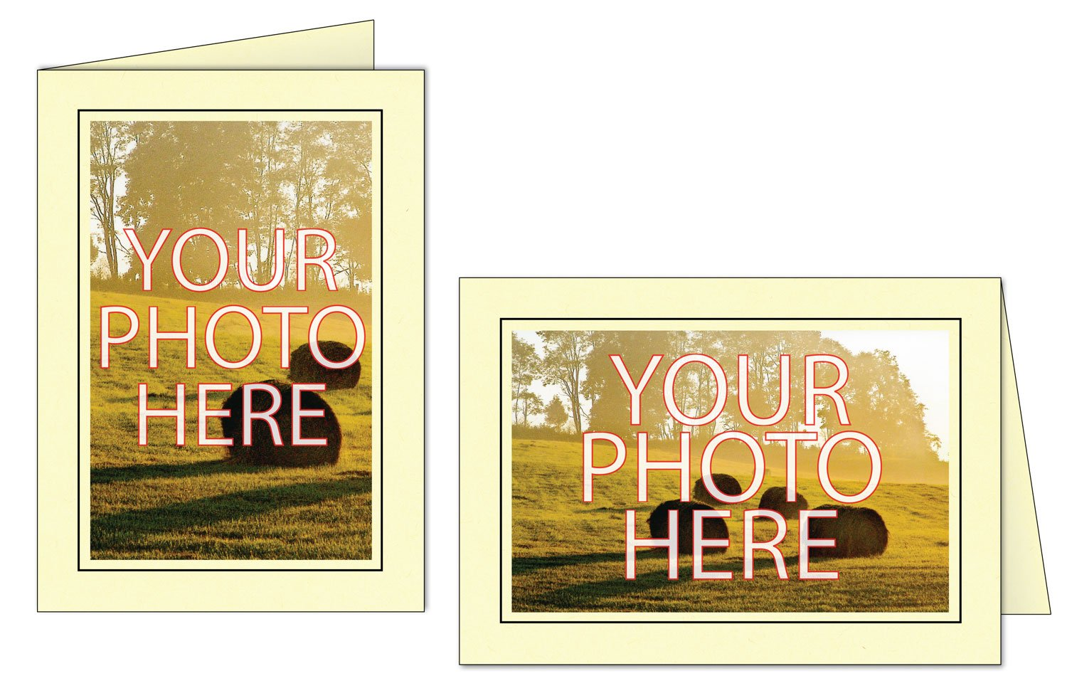 Photographer's Edge, Photo Insert Card, Pear with Black Border, Set of 10 for 4x6 Photos