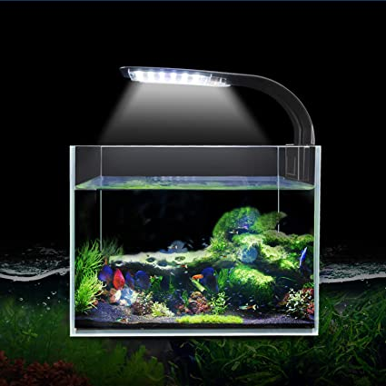 Amazon.com : Senzeal X5 Virgo 24 LED Aquarium Light 10W Clip-on Lamp  Aquatic Plant Lighting for 10-15inch Fish Tank (Black) : Pet Supplies