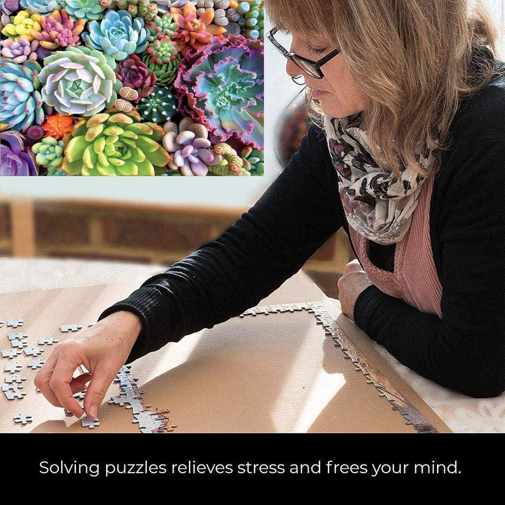 Succulent Spectrum Plants Puzzle Adult Children KidsHoliday Puzzles1000 Piece