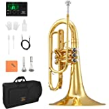 Eastar Marching Mellophone Student Standard Gold Key of F with Hard Case Mouthpiece Gloves Oil Tuner Cleaning Kit, EMLP-380