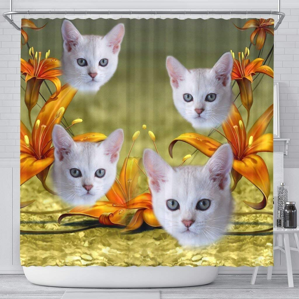 Pawick Lovely Burmilla Cat Print Shower Curtains