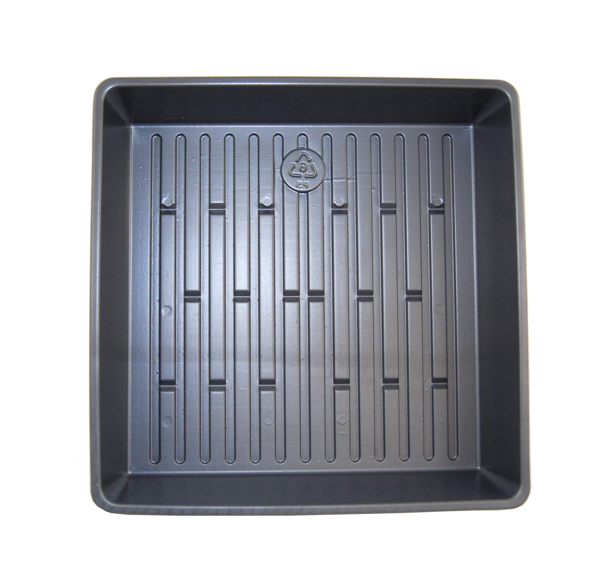 Wheatgrass Growing Tray - 10 1/2'' x10 1/12''x 2 1/4'' Wheatgrass Seed Trays - No Holes - 10 pack by Grower's Solution