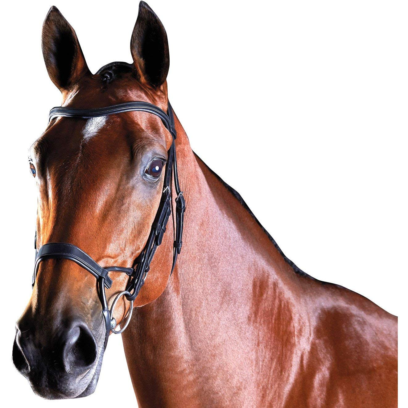 Collegiate Comfitec training Bridle – nero, Pony
