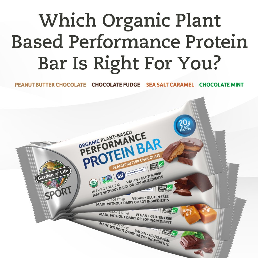 Garden of Life Organic Sport Protein Bar, Vegan, Peanut Butter Chocolate,12 Count by Garden of Life (Image #8)