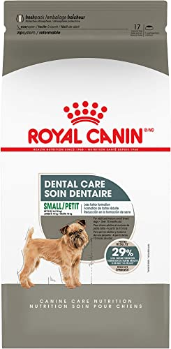 Royal Canin Dental Care Dry Food