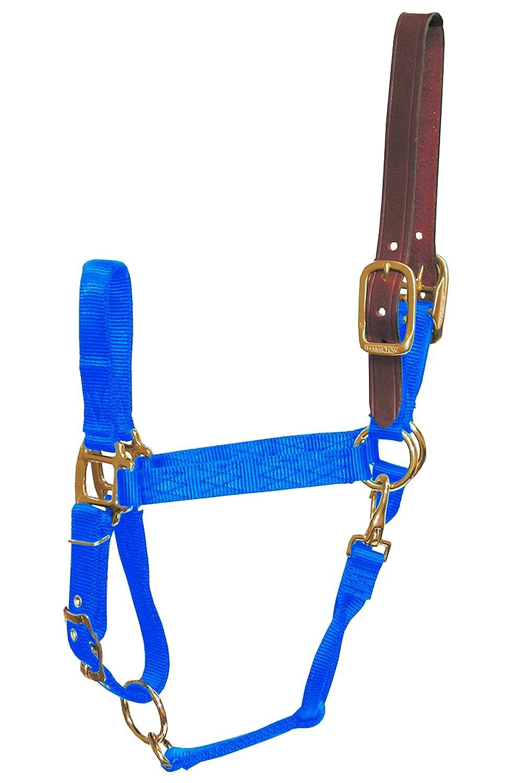 bluee Pony bluee Pony Hamilton Adjustable Halter with Latigo Overlay & Snap