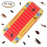 BUYKER Cockroach Motel (10 Traps) Non-Poison Physical Efficient Pest Bug Killer Sticky Spiders & Ants & Roach Glue Trap