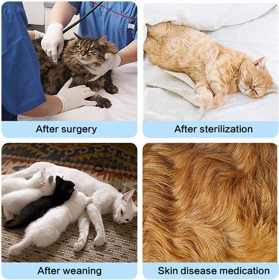 Hundebody op Body f/ür Hunde Chirurgische Weste f/ür Hunde Hundek/örperanzug nach der Operation Medizinisches Haustier Shirt Hund Katzen Kleidung Blue,S