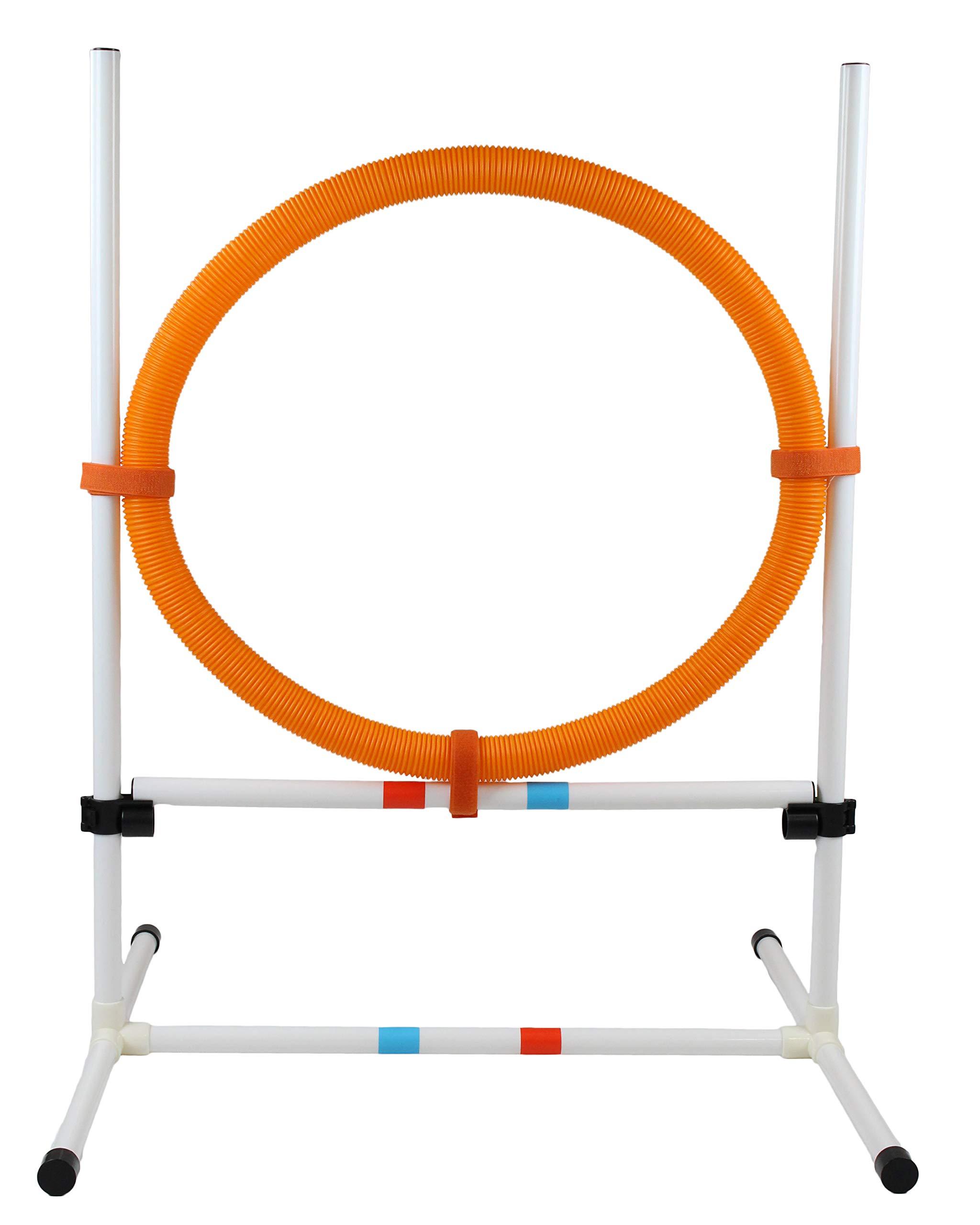 Midlee Dog Agility Hoop Jump Training Equipment by Midlee