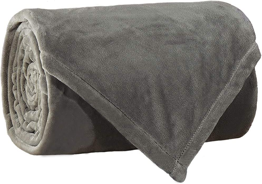 Fleece Bed Blanket Twin Size Super Soft Warm Fuzzy Velvet Plush Throw Lightweight Cozy Couch Blankets ((65x90 Inch) Twin, Grey)