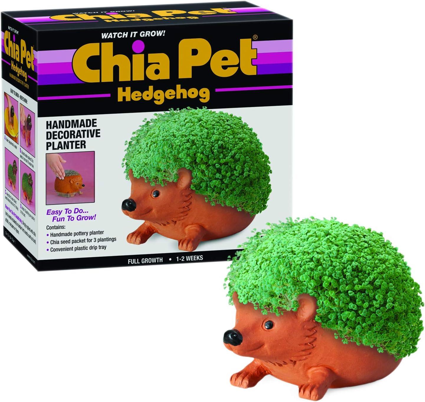 Amazon.com: Chia Bob Ross maceta para mascotas, Princesa ...