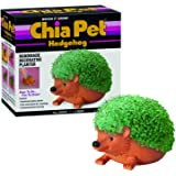 Chia CP438-01 Pet Hedgehog Decorative Pottery Planter, Easy to Do and Fun to Grow