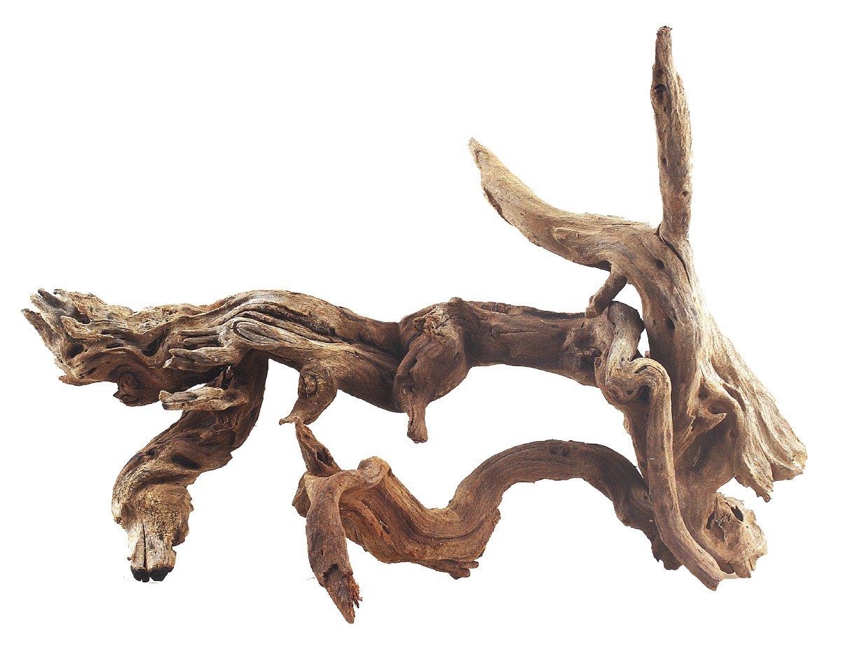 AMTRA Ikebana Slim Bois Décoration pour Aquariophilie 20-40 cm A8047955
