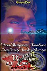 Rookery Cove Vol. 3  (Multi-Author Box Set) Kindle Edition