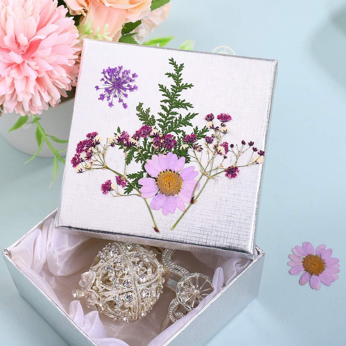 Real Dried Pressed Flowers, DIY Flower Pink Purple Larkspur Natural Pressed Flowers for Crafts Making, 30pcs