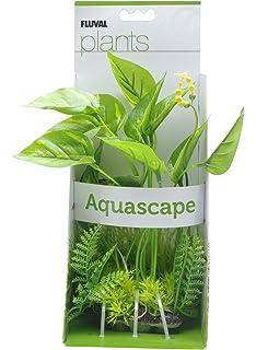 Fluval Marbled Anubias Plant For Aquarium, 9.5 Inch