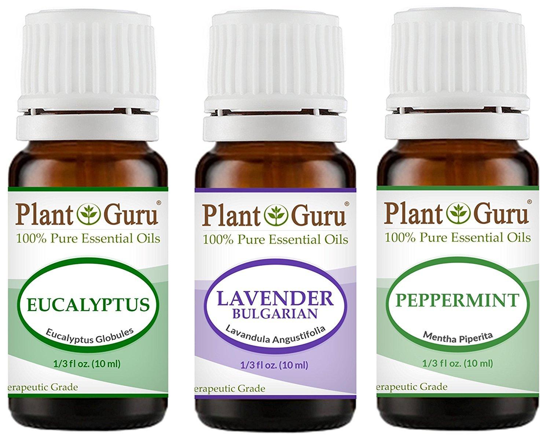【数量限定】 Plant Guru Guru Beginner's Trio Essential Oil Set B00VKUZEZA Kit. 100% Peppermint. Pure Therapeutic Grade 10 ml. Set Includes: Eucalyptus, Lavender, Peppermint. by Plant Guru B00VKUZEZA, 日本花卉ガーデンセンター:3217de56 --- kiddyfox.in