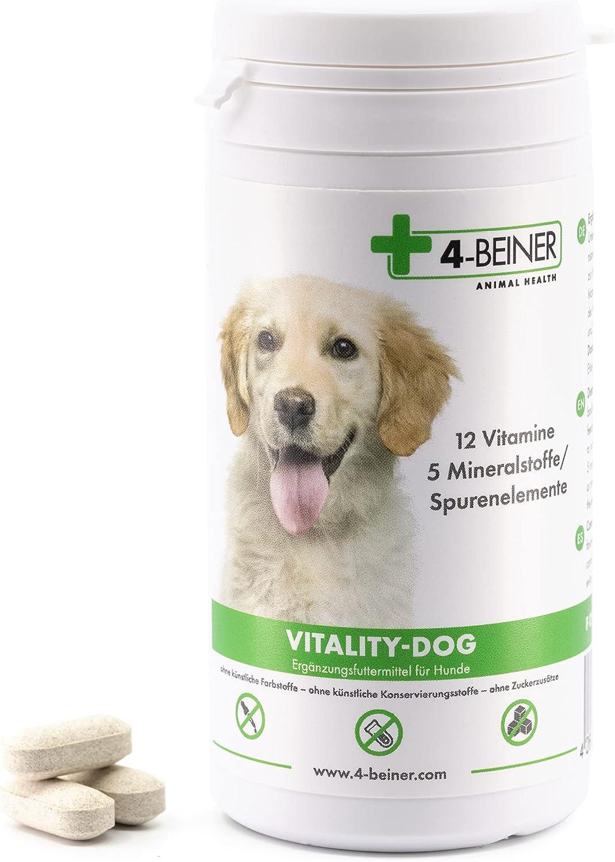Vitality-Dog