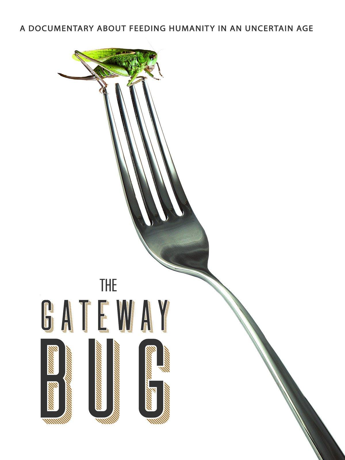 Gateway Bug, The