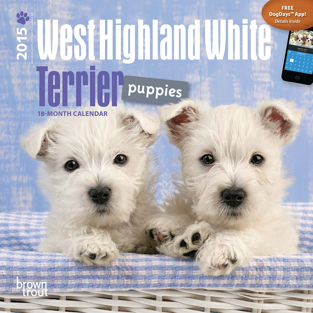 Download West Highland White Terrier Puppies 2015 Mini 7x7 pdf