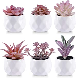 CEWOR 6 Packs Artificial Succulents Fake Mini Ceramic Potted Faux Small Plants for Home Bathroom Office Desk Table Decoration