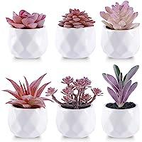 CEWOR 6 paquetes de plantas suculentas artificiales falsas pequeñas en macetas de cerámica para el hogar, baño, oficina…